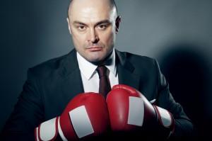 paladin boxer 300x199
